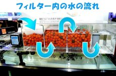 画像2: 【飼育用品・器具】【フィルター】【上部フィルター】EASY TOP フィルター MODEL900【送料梱包料込み】(淡水 海水可) (2)